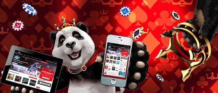 Royal Panda Bonuses For Indian Gamblers